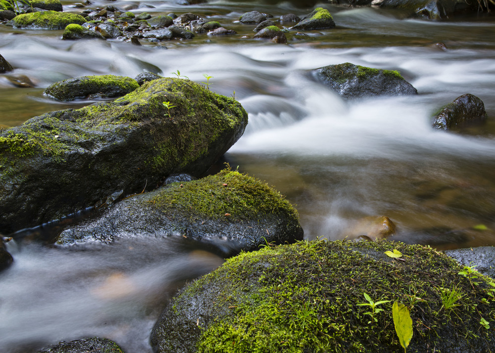 Stream and rocks at Mt. Hood.  Nikon D800, Nikkor 24-120mm lens @ 44mm, f22, ISO 50, 4 sec, -2/3 stop exposure adjustment.