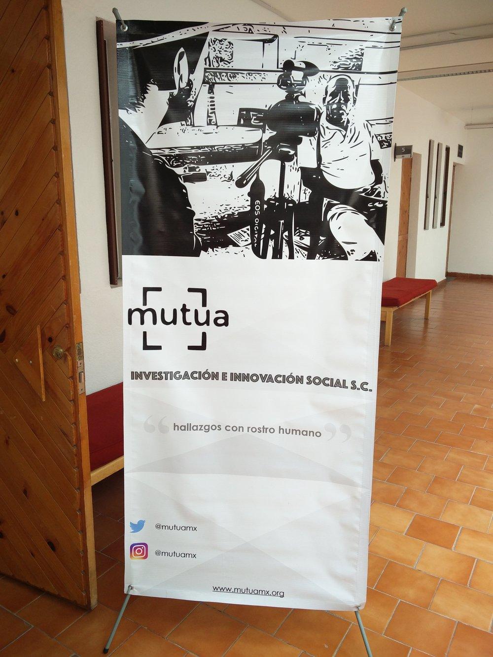 Mutua - Investigación Social Aplicada
