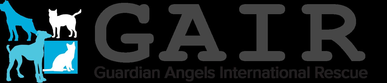 Guardian Angels International Rescue