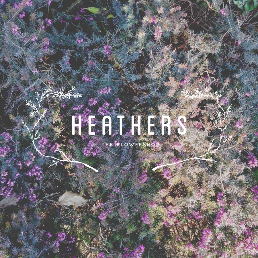 heathers: rebranding