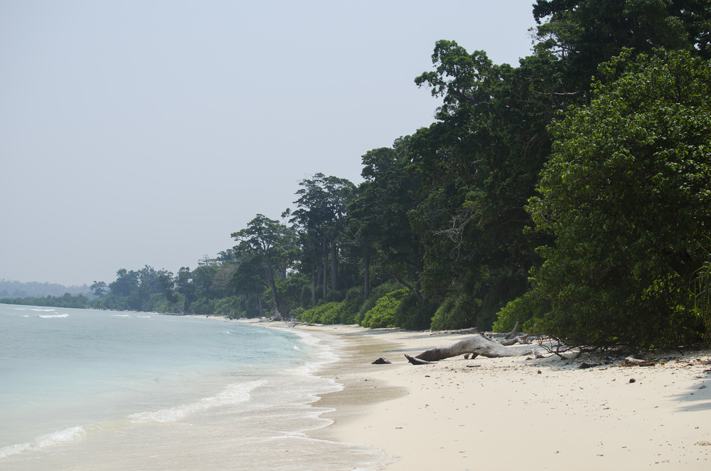 Neil Island (The Andaman Islands) - So We Go