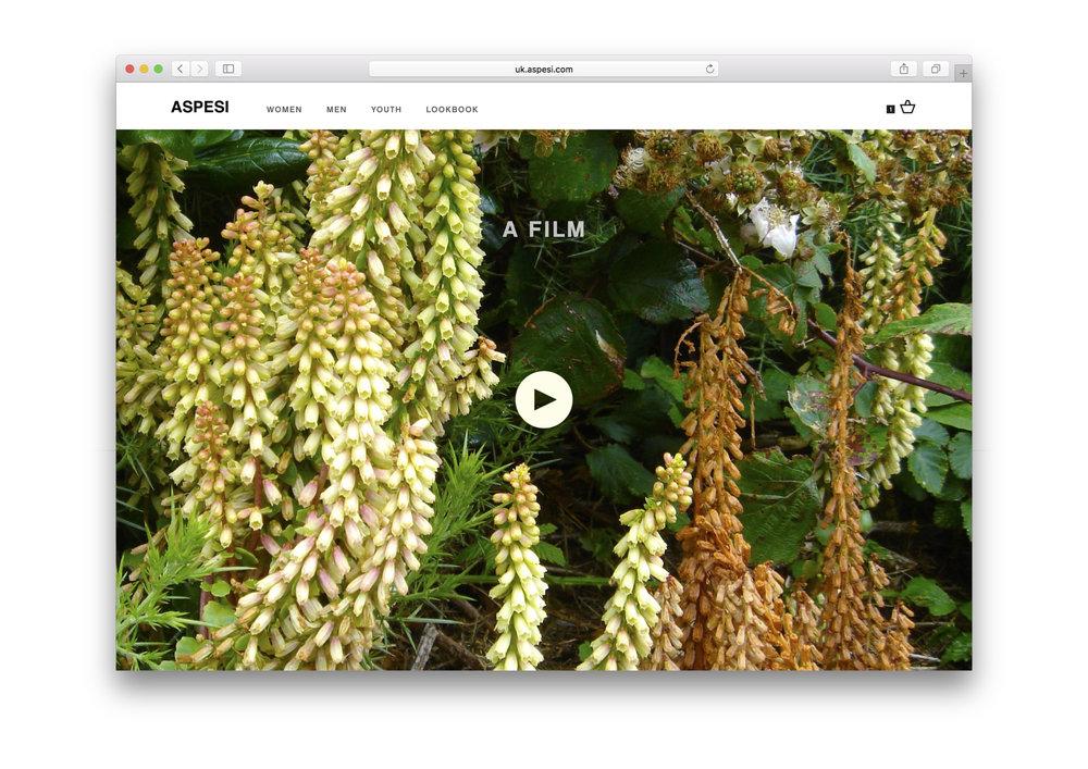 DIRK VAN DOOREN_10_Aspesi Horizontal Homepage Film Content 1.jpg