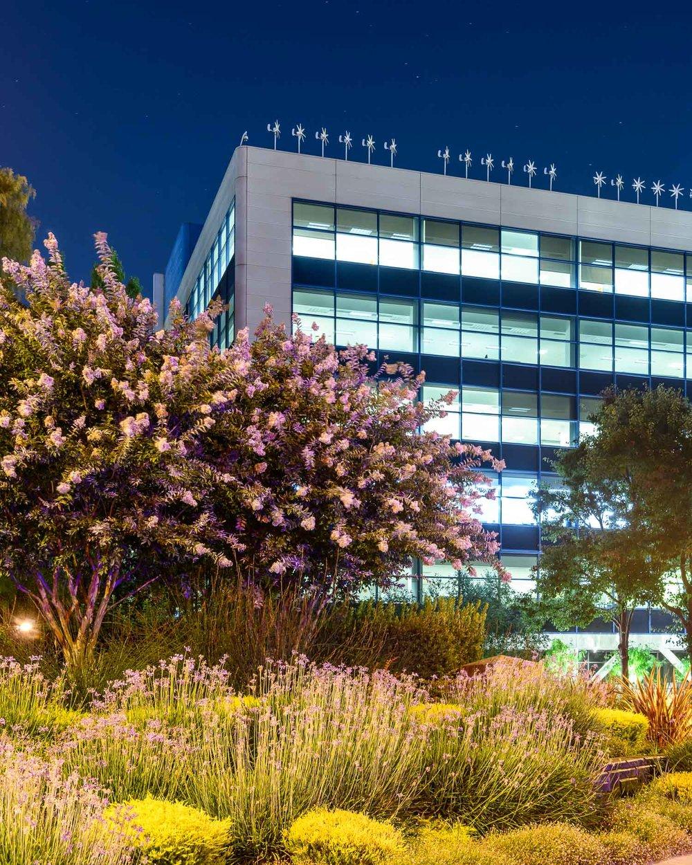 The Intel headquarters, Santa Clara
