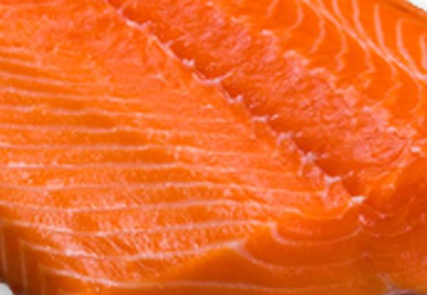 Salmon-web.jpg