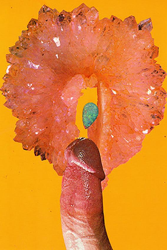 'Orange Sister',  Penis Series,  2013