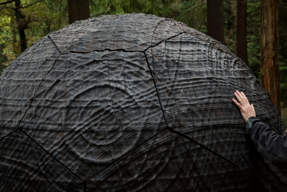 Cosmos by Semiconductor installed at Alice Hold Forest, commissioned through the first edition of Jerwood Open Forest in 2014.