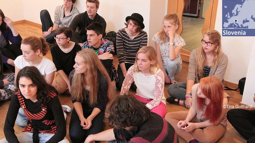 """<i class=""""fa fa-users"""" id=""""b""""></i>[[se integran en una red de jóvenes investigadores europeos.///integram-se numa rede de jovens investigadores europeus.]]"""
