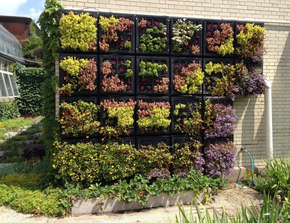 Vertical garden at Garfield Park Conservatory