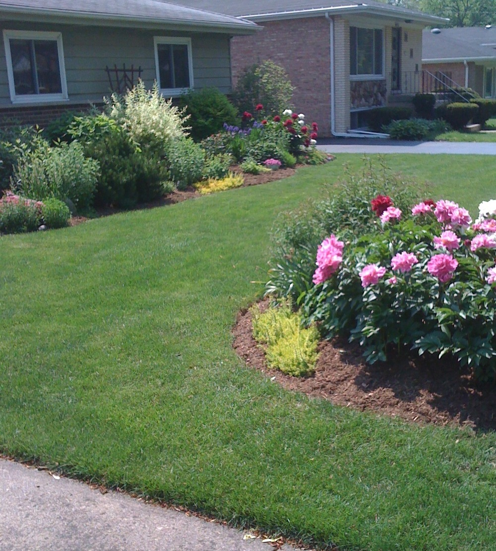 A green lawn helps frame your flower beds.