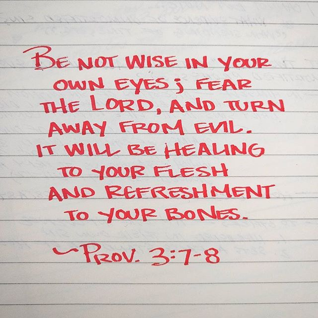 #proverbs #proverbs_by_hand #bible #bibleverse #handwriting #handwritten #calligraphy #fountainpen #fountainpens #wise #wisdom #flesh #bones #evil #eyes