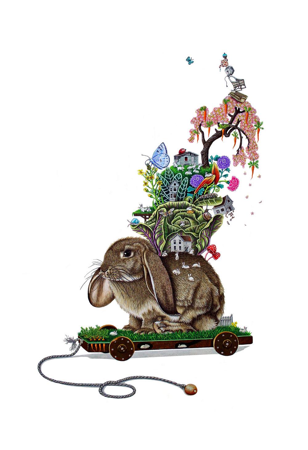 Masch Brandy- Bunny Hill.jpg