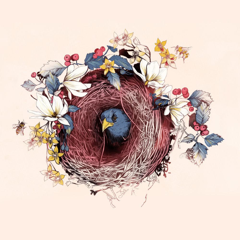 Nesting_La_Scarlatte.jpg