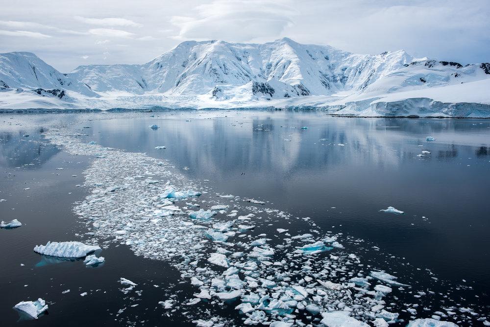 joe-thomas-photo-antarctica-travel-new-york-photographer-19.jpg