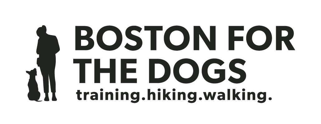 Boston for the Dogs