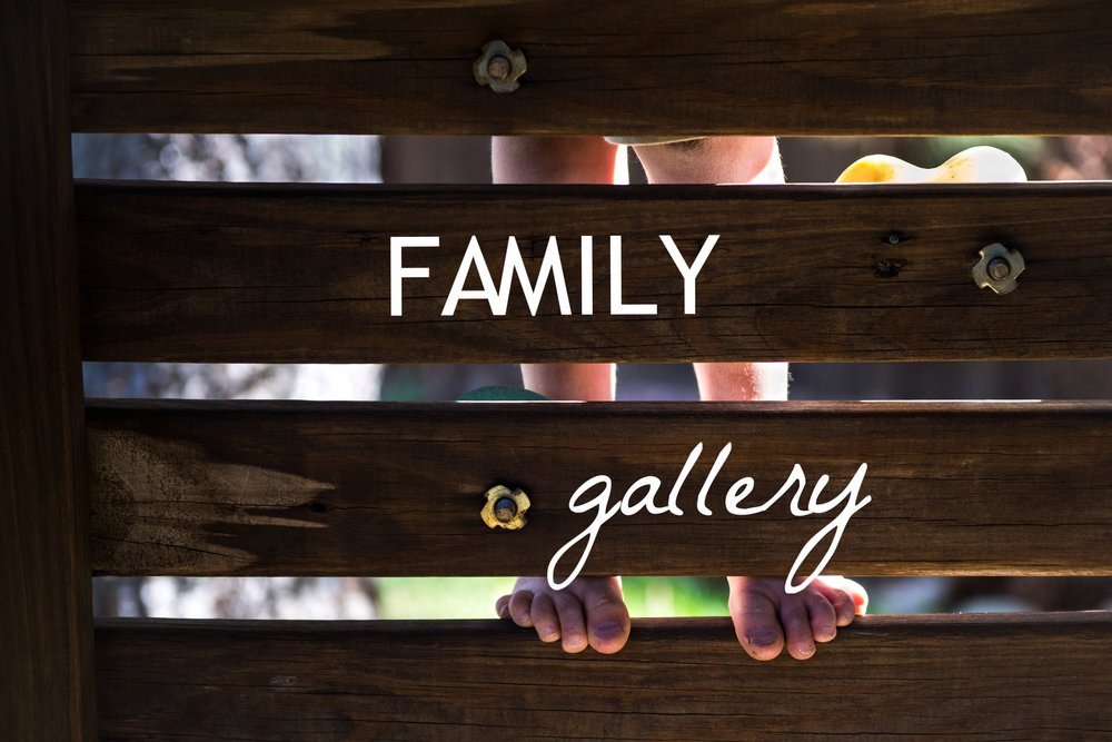 Family Gallery Link