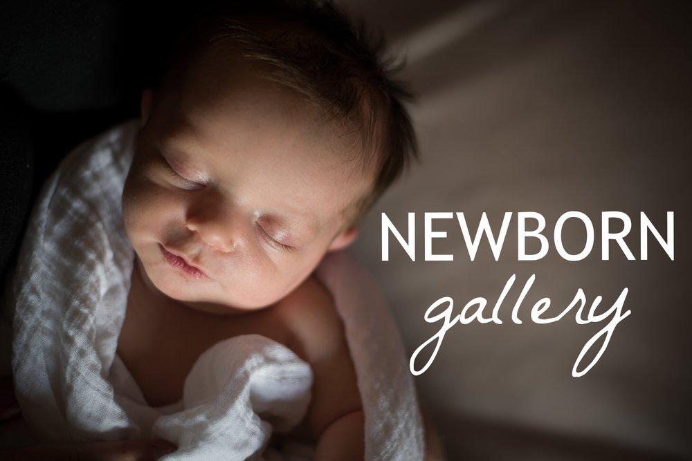 Newborn Gallery Link