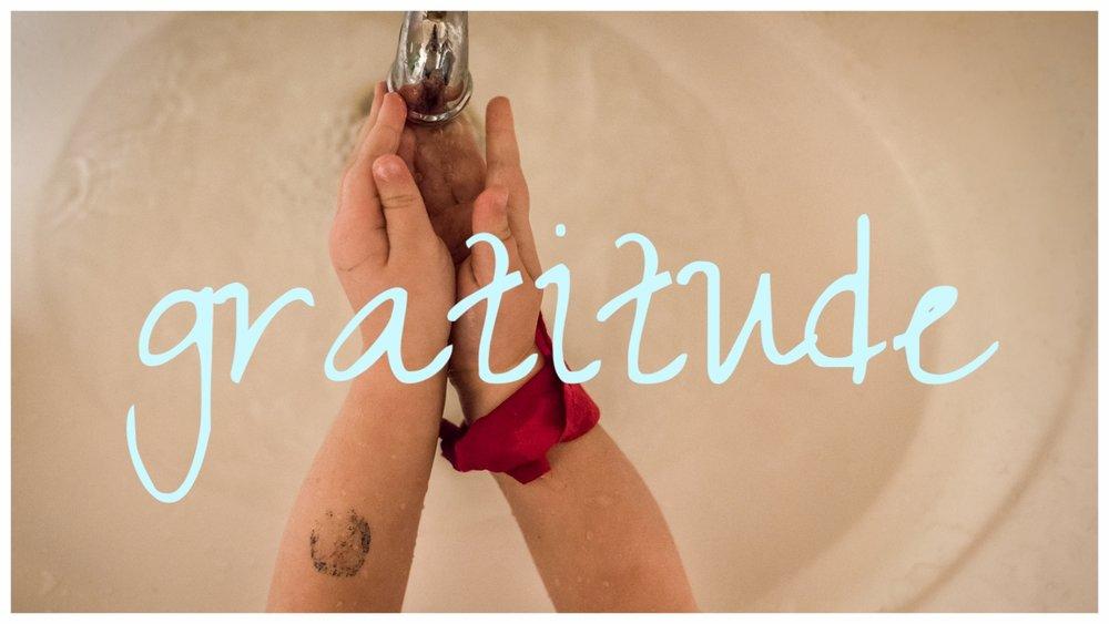 The Pen & Camera - gratitude