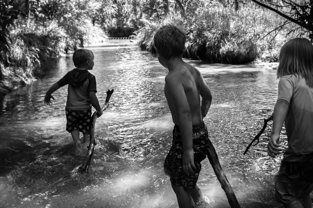 Blog - The Pen & Camera - Molly Rees Photo - Black and White Documentary Childhood Photography - boys wading in stream through woods at Belleview Park in Denver, Colorado by M. Menschel