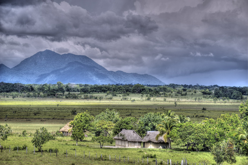 IMAGE OF THE RUPUNUNI SAVANNAH