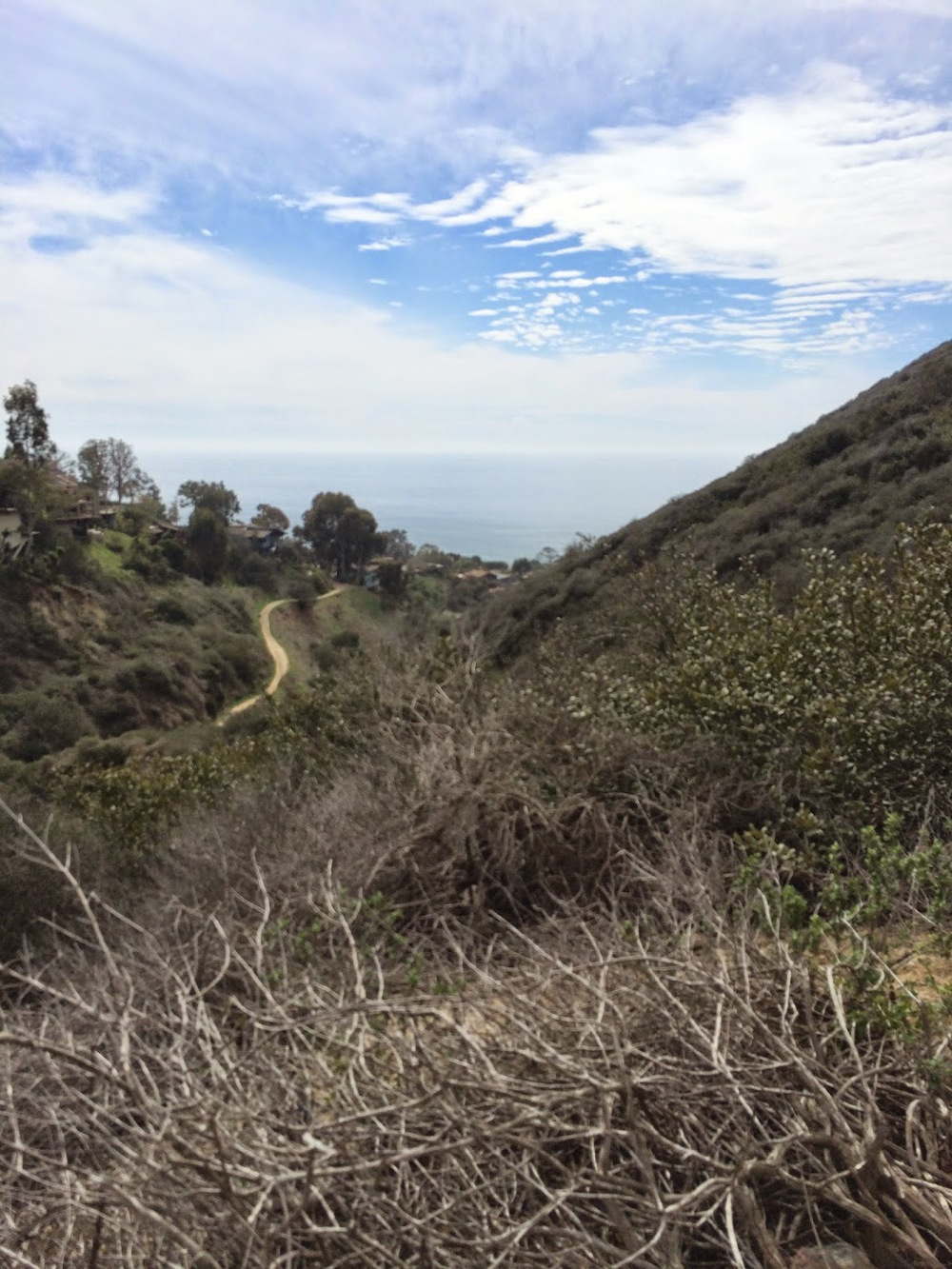 Hike 16 - Valido to Aliso Summit_2.JPG