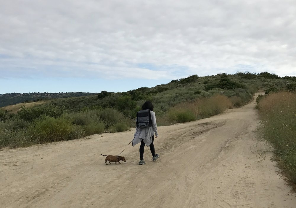 Taking Louie out for a hike.