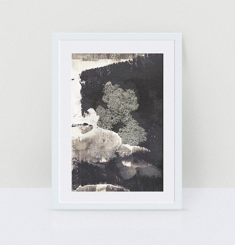Silhouette, 12x16, 35$ / Photographie : Marc-Antoine Léveillé