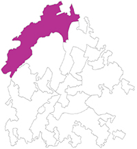 sm district6_lines 30 percent 100x109.jpg