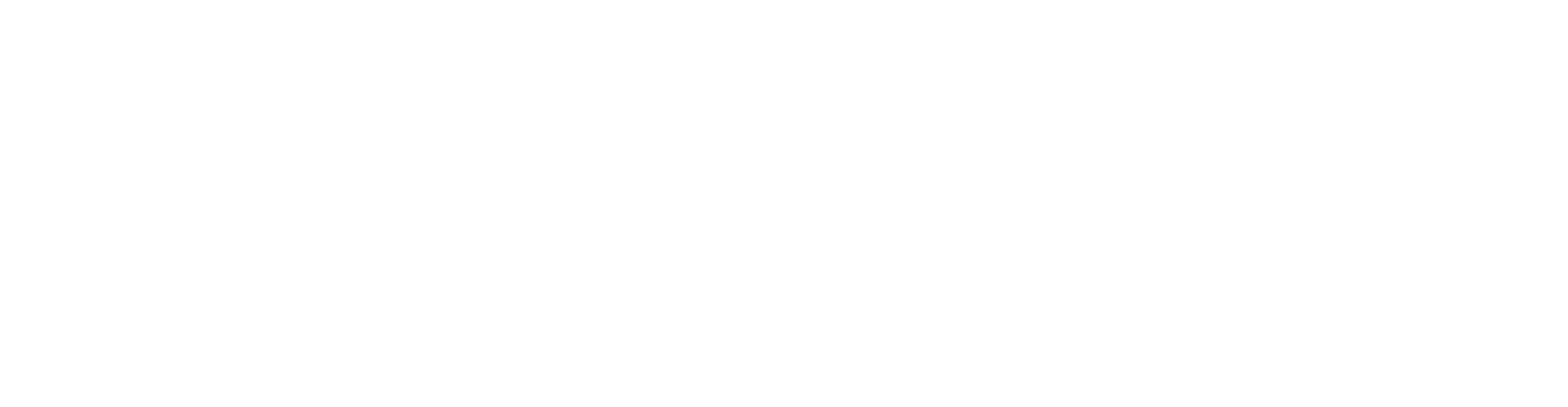 Upstander Project