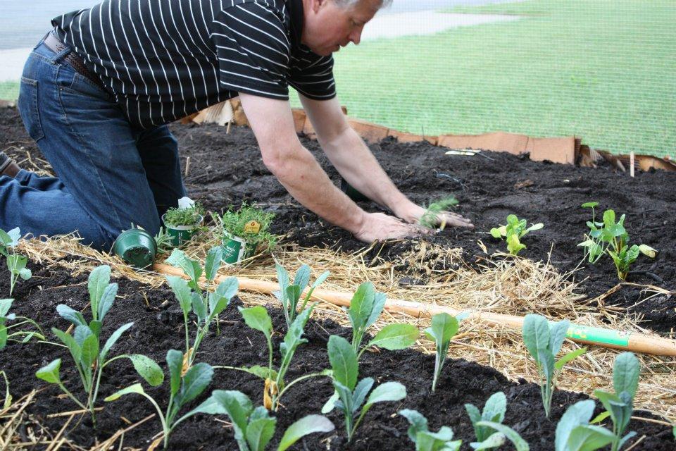 stan planting.jpg