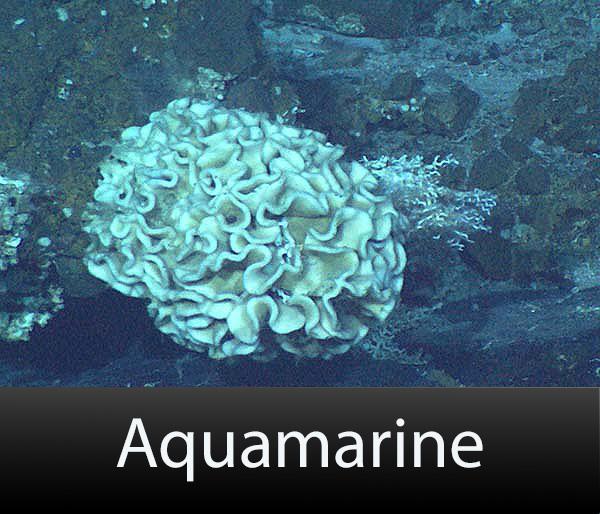 Aquamarine-text.jpg