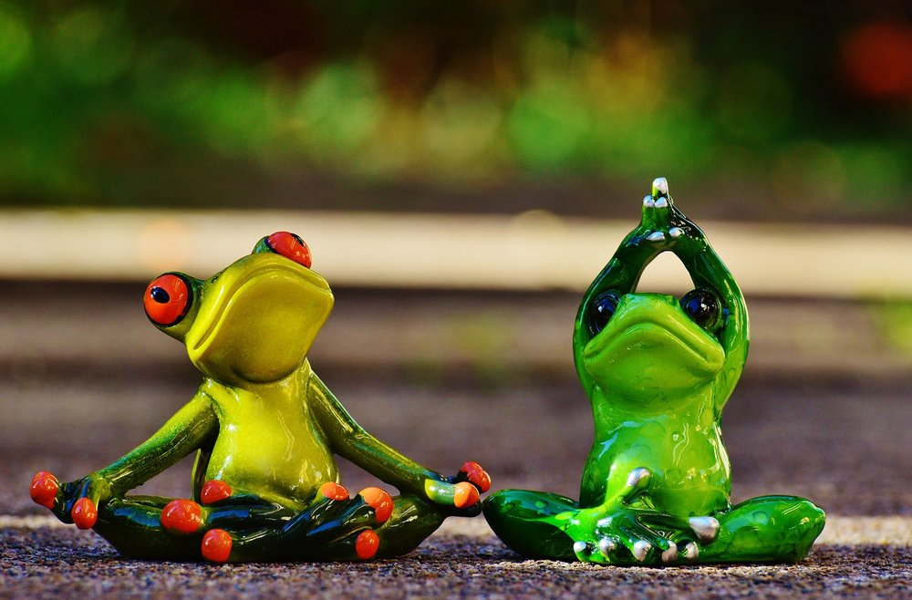 frogs-1030284_1920.jpg