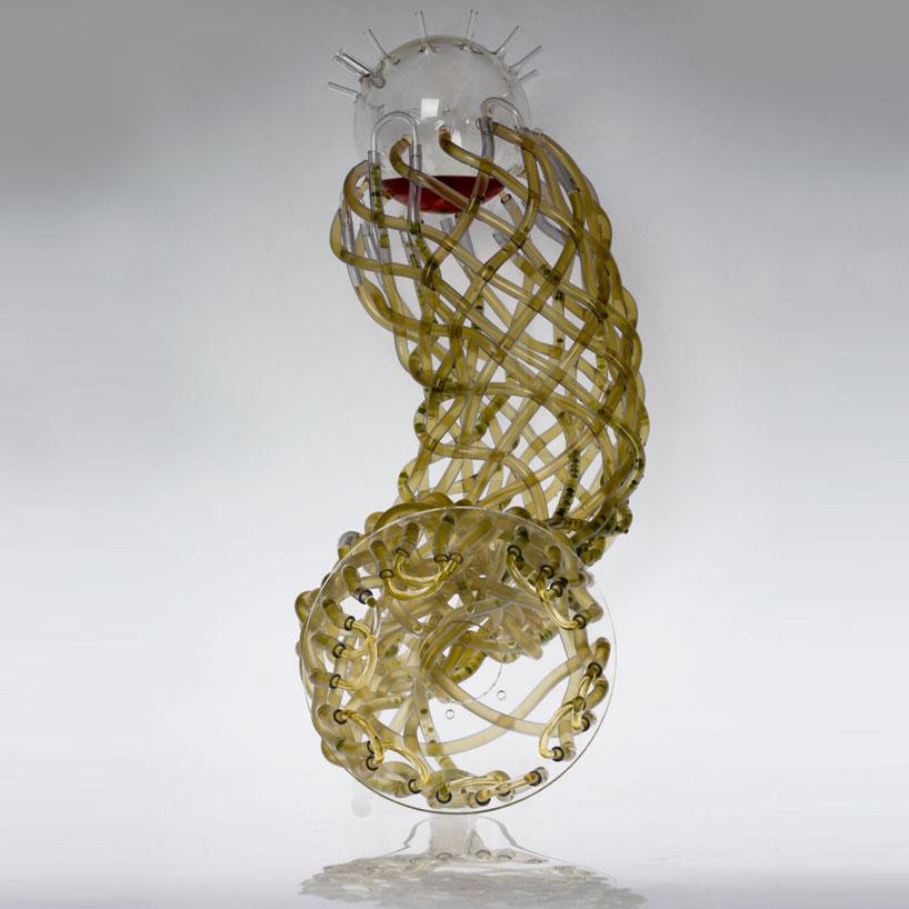 marin-sawa-algaerium-bioprinter-designboom-01.jpg
