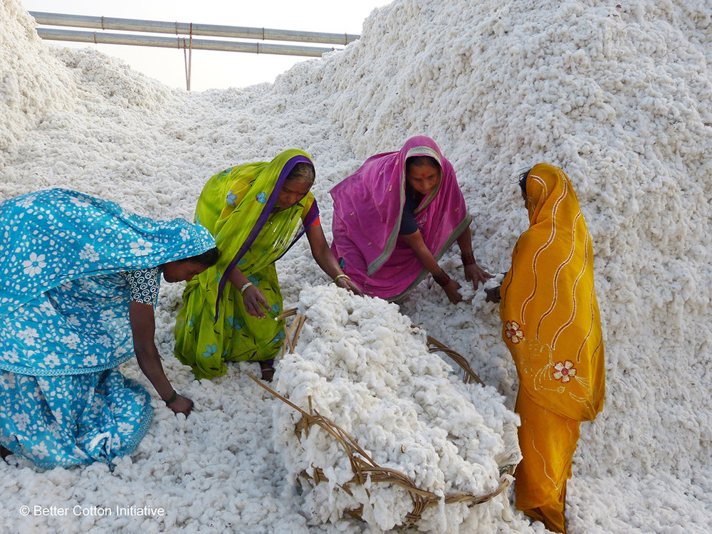 Better Cotton - Female gin workers.jpg