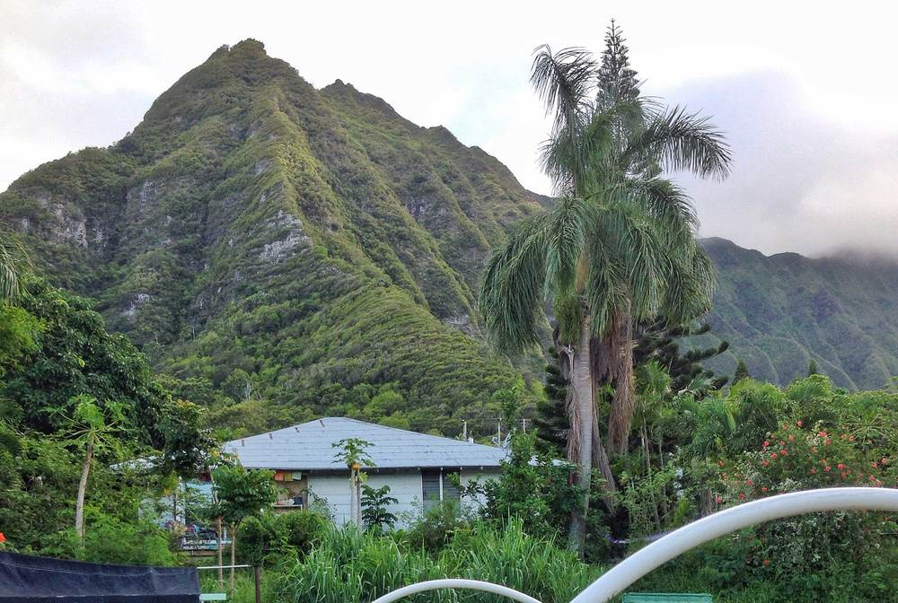 The mountain overlooking our farm here in Oahu