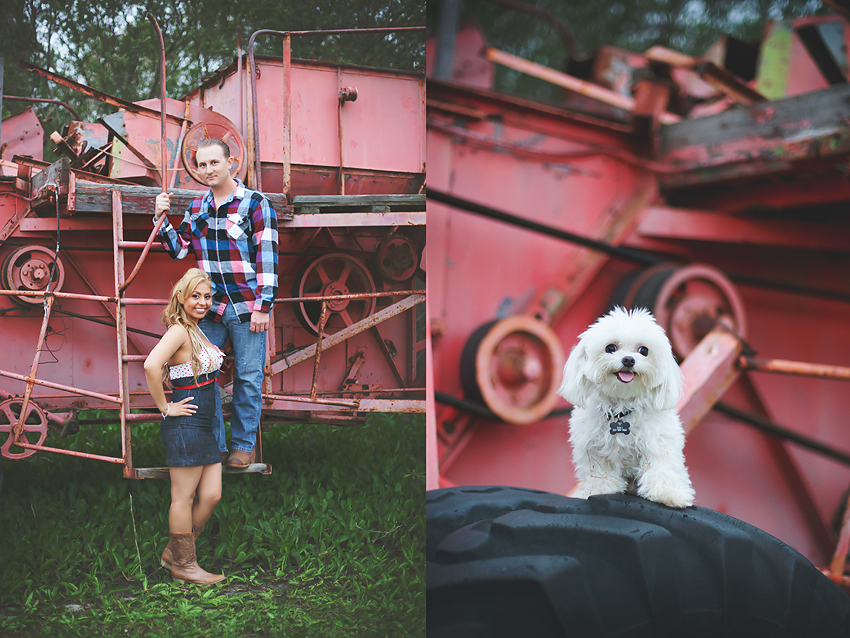 Rustic-Country-Engagement-Pictures (7)