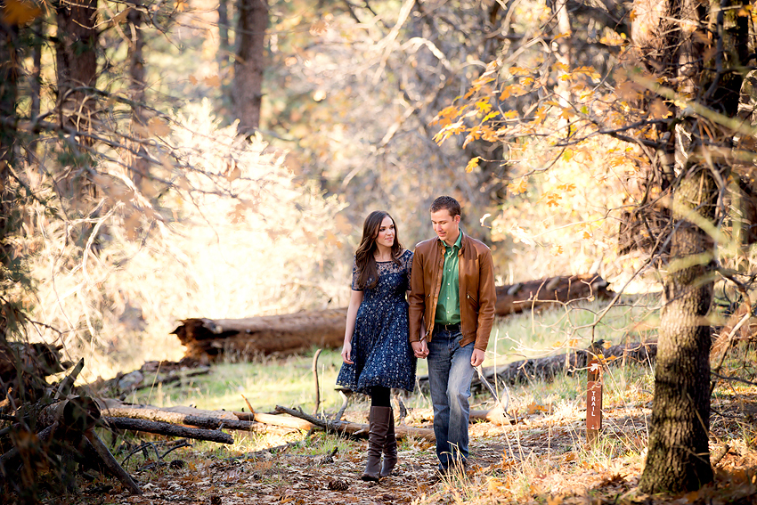 Mountain-Engagement-Photos (12)