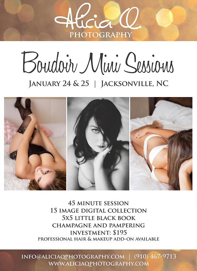 2014 boudoir minis