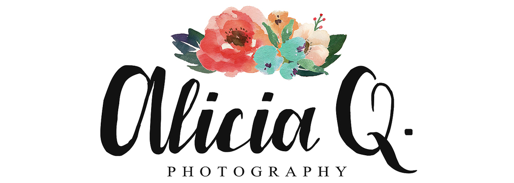 Alicia Q. Photography | Wedding Photographer