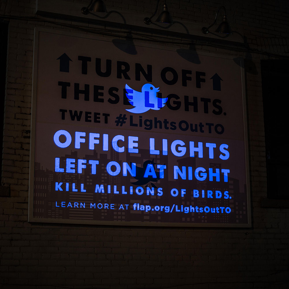 "Interactive outdoor advertising; billboard in activated state, revealing message ""OFFICE LIGHTS LEFT ON AT NIGHT KILL MILLIONS OF BIRDS""."