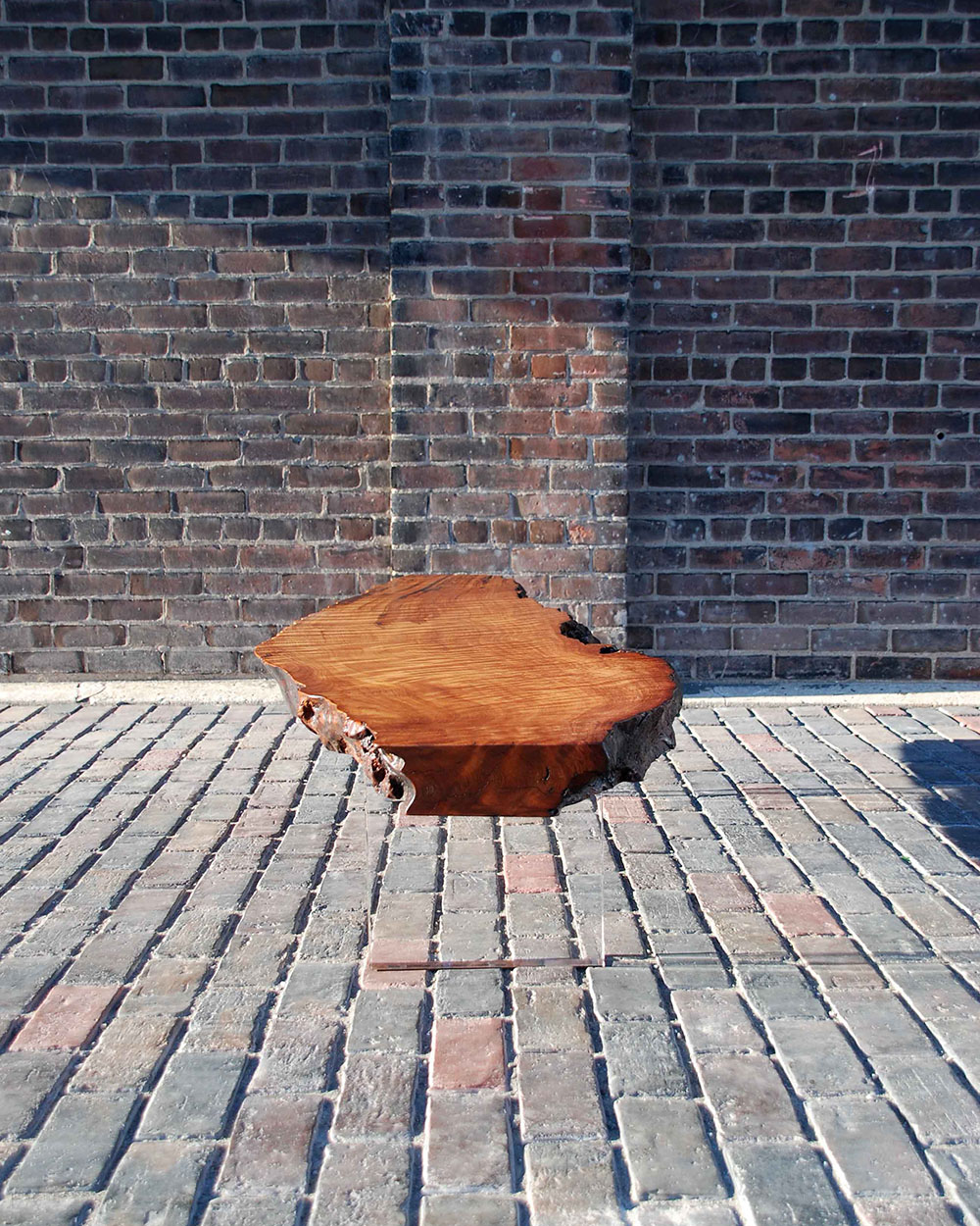 Custom low coffee table designed by STACKLAB; historic redwood burl surface with clear-cast acrylic legs.