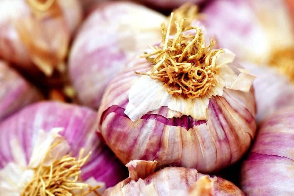 garlic-2390990_1920.jpg