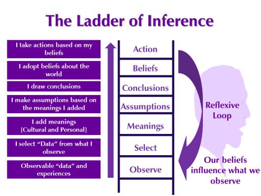 ladder of inference copy.jpg