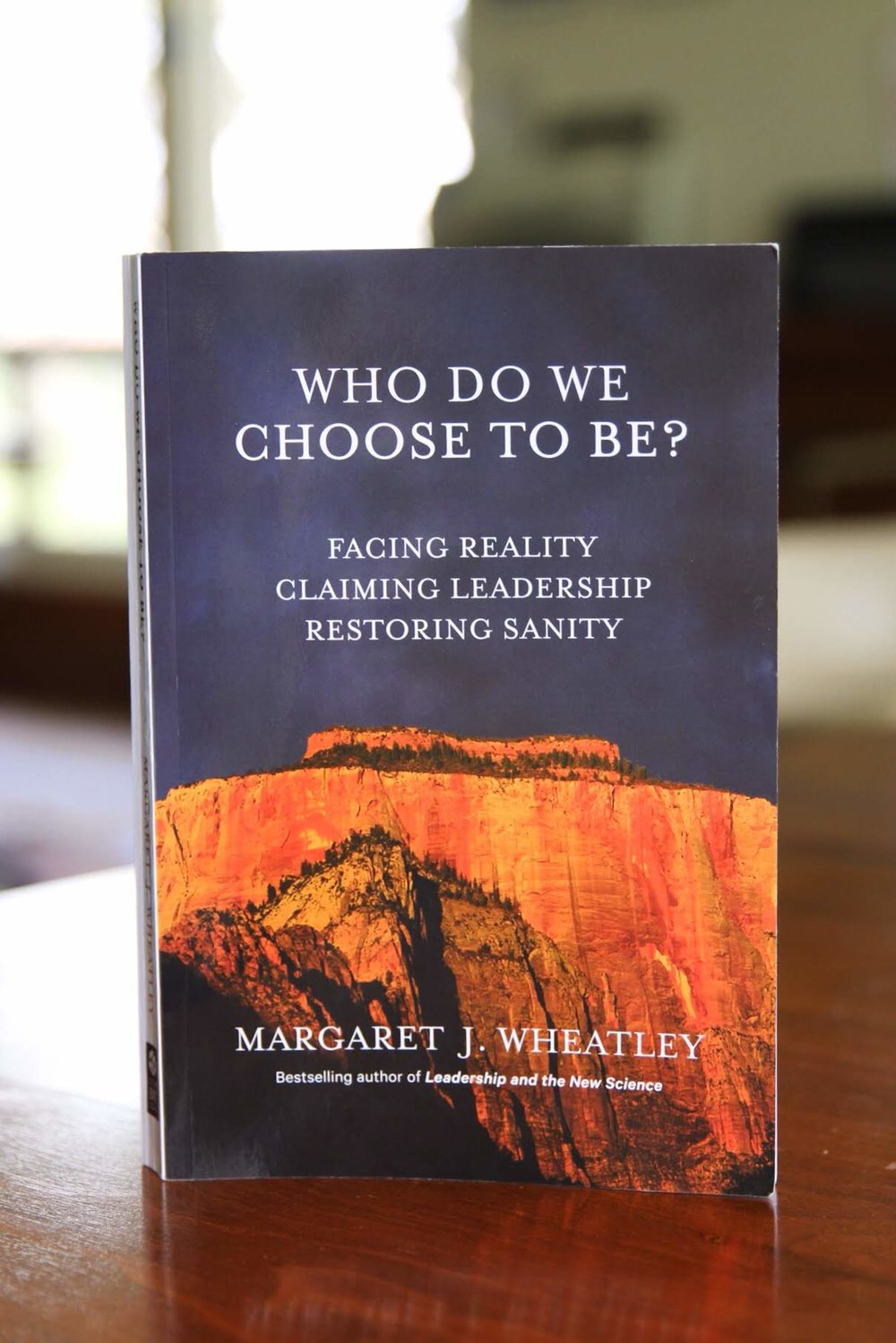 Meg's most recent book