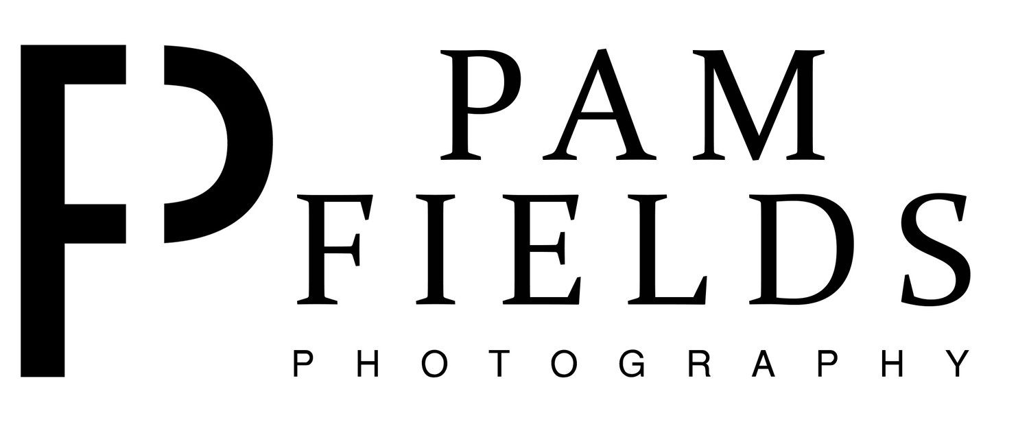 Pam Fields Photography Las Vegas Portrait, Fashion, and Boudoir Photographer