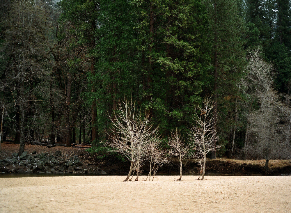 Yosemite Valley. California.
