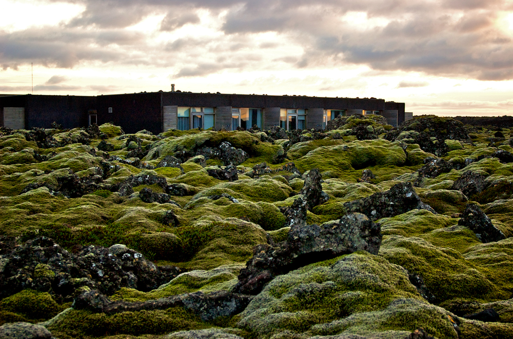 luzod-design-co-mae-iceland-lava-field-blue-lagoon.jpg