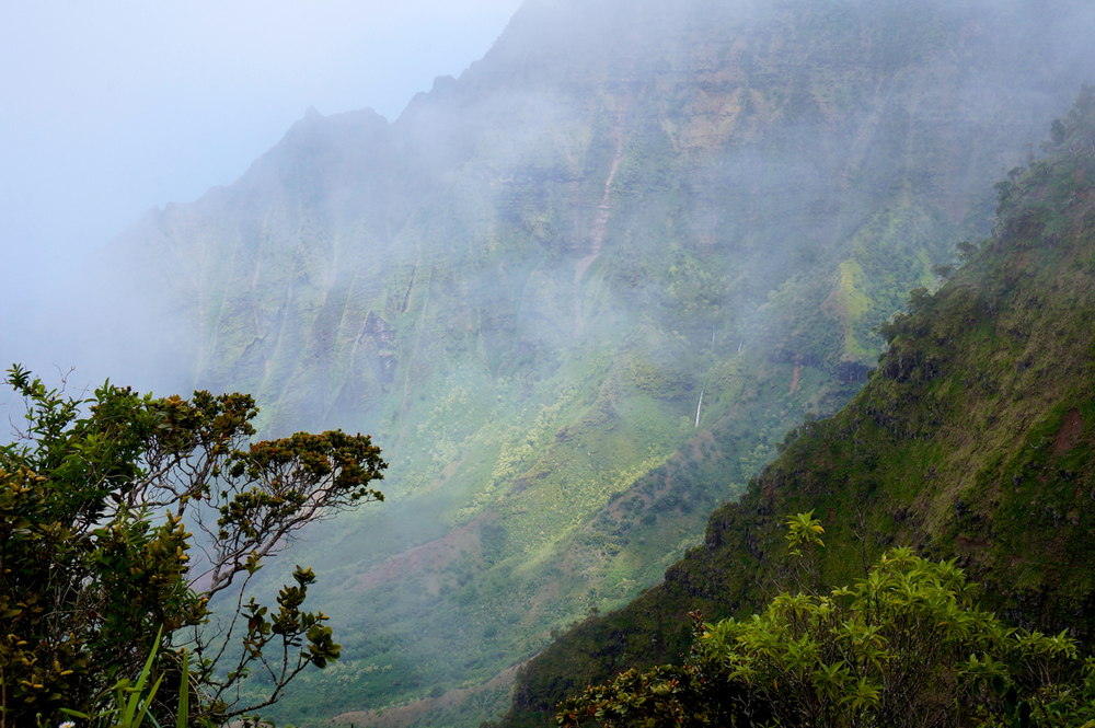 luzod-design-co-mae-kauai-waterfalls-mist.jpg