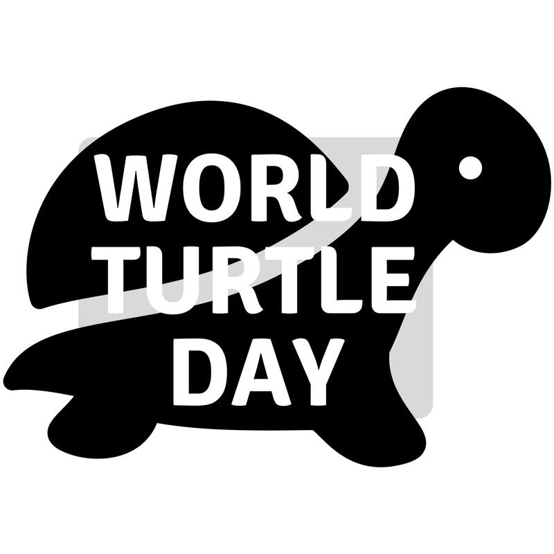 turtle day.png