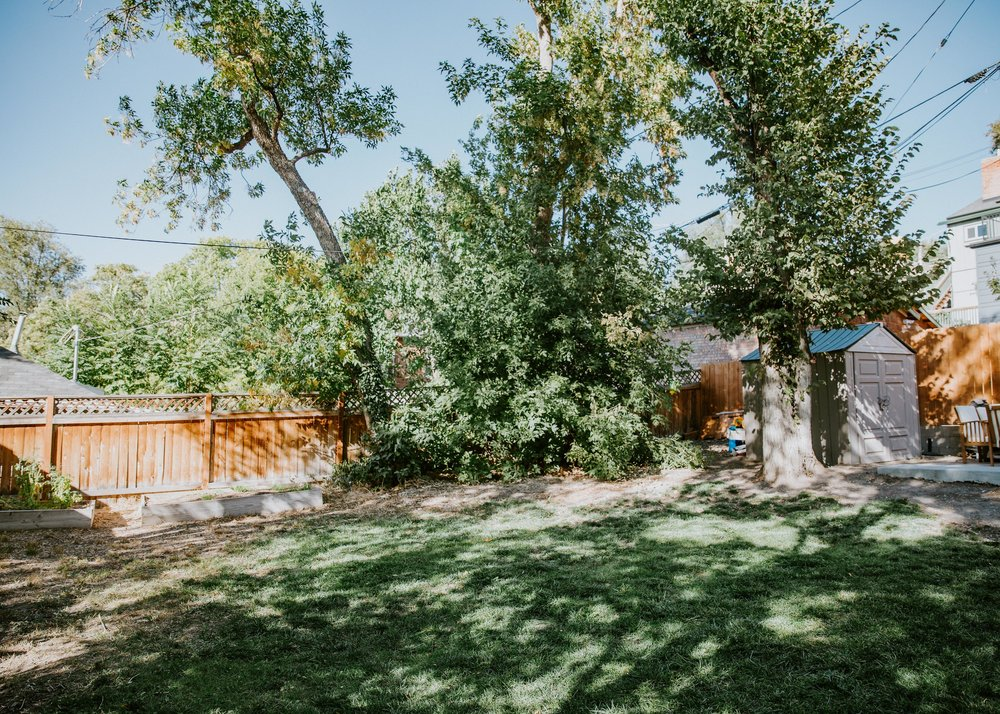 9 - backyard.jpg