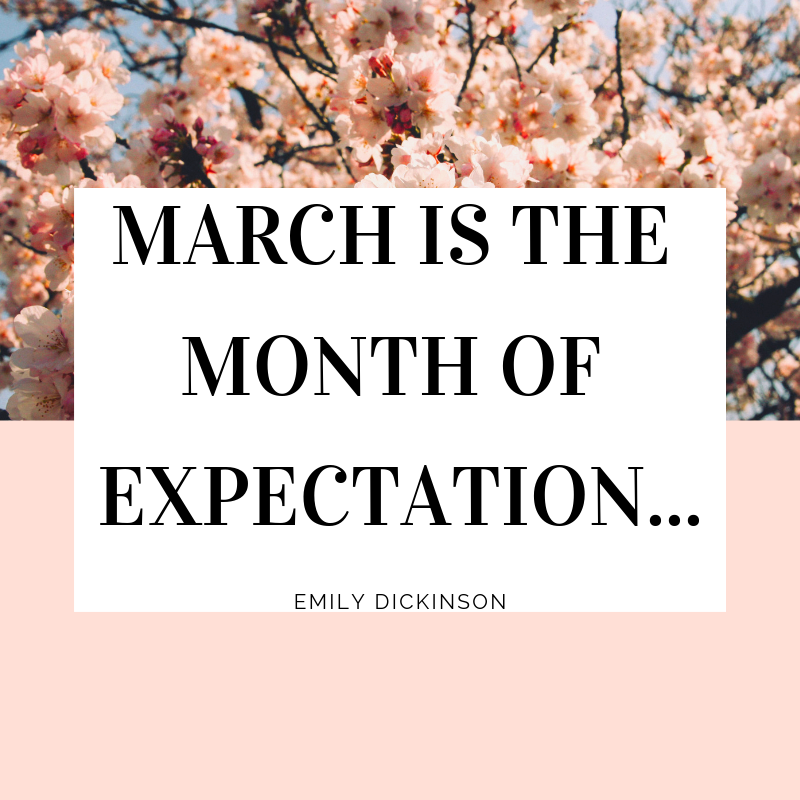 March Expectation.png